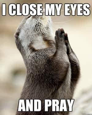 bidden om bezoekers google werkt niet
